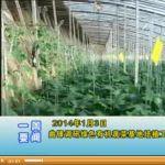 2014年01月11日陵县新闻