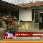 2014年03月24日陵县新闻