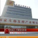 2015年04月08日禹城新闻