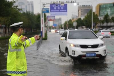 昨晚这场雨全市平均降水量43.8毫米,最大降水量宁津杜集:102.7毫米!