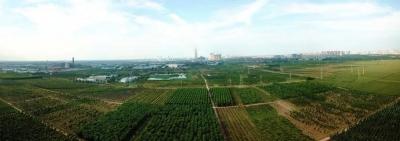 德州运河经济开发区:践行绿色发展理念  推动高质量发展(一)