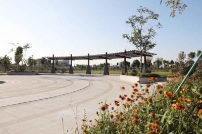 平原:新建4处公园 市民休闲又增好去处