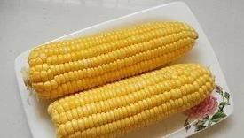 时令吟 | 香香的嫩玉米——诗歌散文小辑