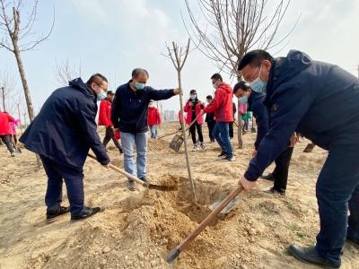 德州各界积极参与植树造林活动,践行绿色发展理念, 共建美丽家园