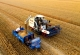 平原麦收逾七成玉米播种过半