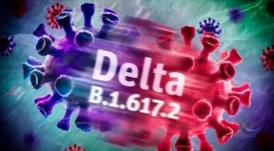 德州市疾控中心紧急提醒:德尔塔病毒来者不善 关注汛情勿忘疫情